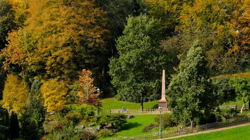 Autumn Avenham Park-1793