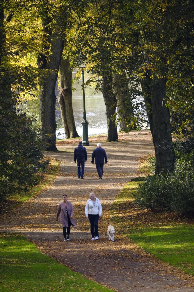Autumn Avenham Park-1803