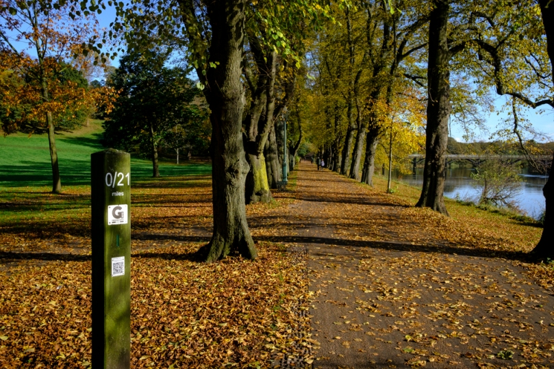Avenham Park Autumn-4578