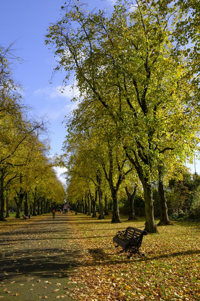 Haslam Park, Preston