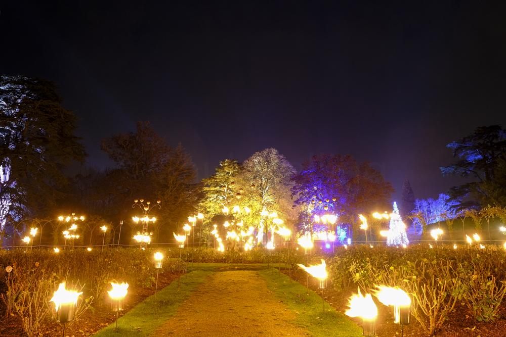 Blenheim Palace-6619