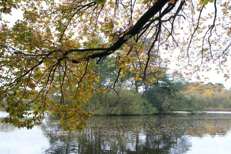 Cuerden Park-4807